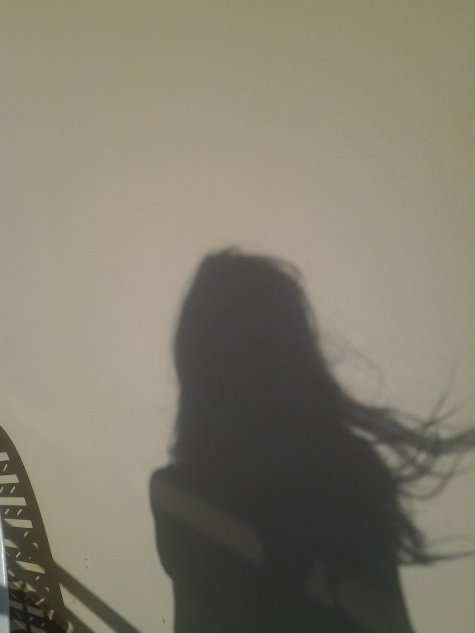 capelli al vento